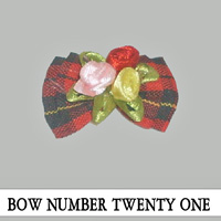Bow Number Twenty One