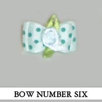 Bow Number Six