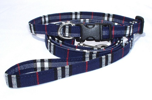 navy burberry collar and leash