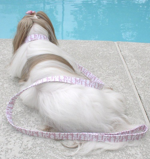 Pink Dior Fabric collar and leash
