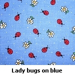lady bugs on blue