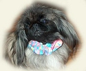 Canine Collar Covers