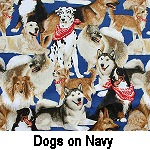 Dogs on Navy