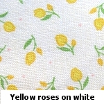 yellow roses on white background