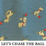 Let's Chase the Ball