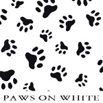 Paws on White